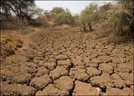 ▫قابل توجه استاندار خوزستان؛  *اتلاف ۸۰۰ روز برای ۸۰۰ متر لوله گذاری/ تشنگی زمین های پایین دست کرخه ادامه دارد*